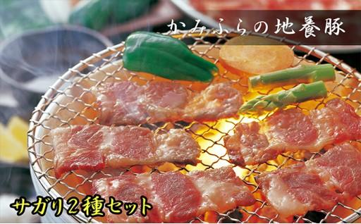 [№5543-0034]かみふらのポーク【地養豚】サガリ(生・味付)2kgセット