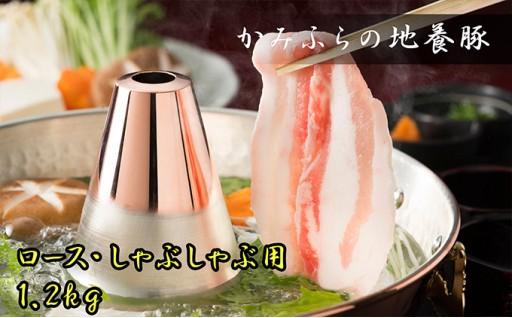 [№5543-0037]かみふらのポーク【地養豚】しゃぶしゃぶ用ロース1.2kg