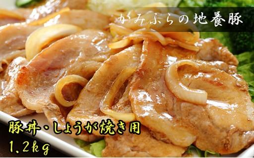 [№5543-0036]かみふらのポーク【地養豚】豚丼・生姜焼き用ロース1.2kg