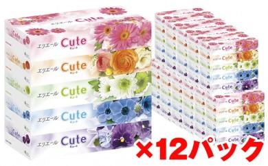 [№5665-0339]エリエールティシューキュート160W5P×12パック(計60箱)