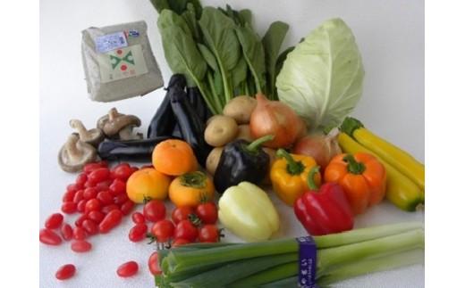 081 旬菜便り! 野菜とお米のセット 3か月連続のお届け