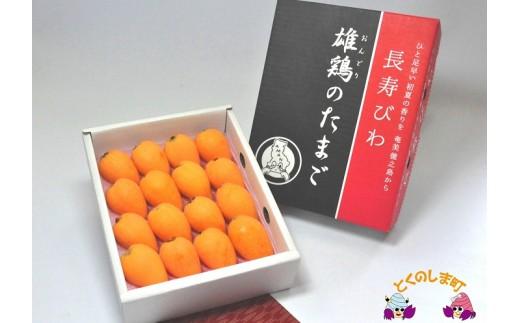 """124~ひと足早い""""初夏""""の香りを~徳之島産びわ(500g)"""