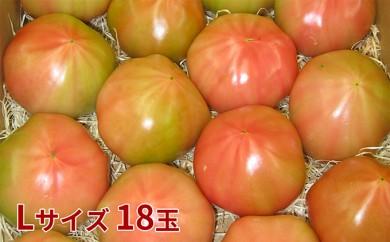 [№5724-0193]オロフレトマト18玉入り(Lサイズ)