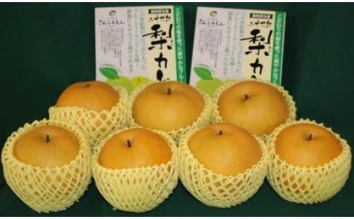 036 新興梨・二十世紀梨カレーセット