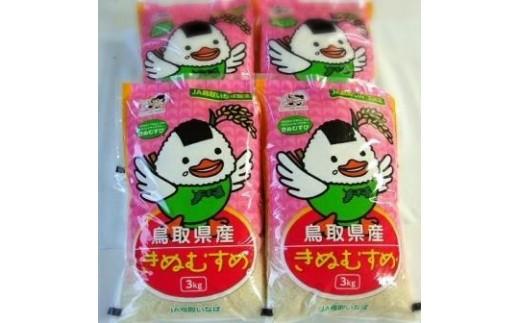 097 鳥取県産きぬむすめ(12kg)