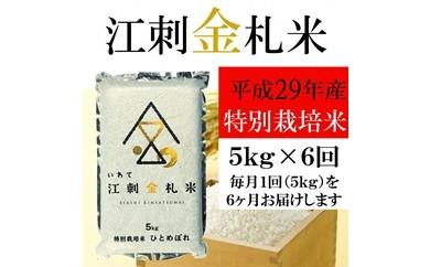 【平成29年度米】☆全6回お届け頒布☆ 江刺金札米ひとめぼれ パック米 5kg×6回