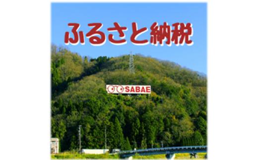 鯖江市ふるさと納税お礼品ポイント【3P】