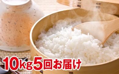 [№5665-0386]北海道赤平産きたくりん特別栽培米10kg×5回お届け