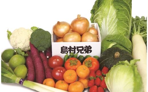 【新たまねぎ】農家さんと選んだ畑の恵みセット