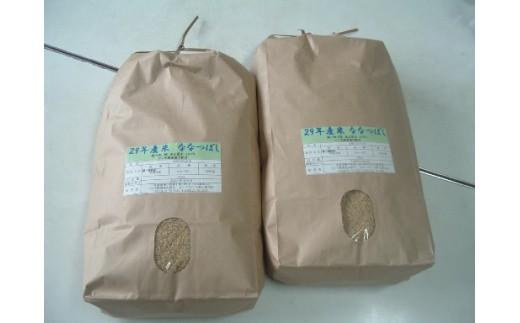 D02 ななつぼし(玄米) 年間定期便(20kg×6回)  ※お届けするのは玄米です。