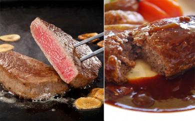 [№5890-0161]サロマ和牛ヒレステーキとハンバーグセット