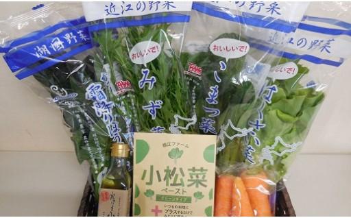 30A011 自社栽培野菜とかける小松菜ソースのセット