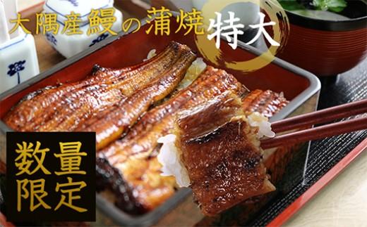 【E-355】たっぷりお得感!大隅産 鰻の蒲焼 特大サイズ×6尾