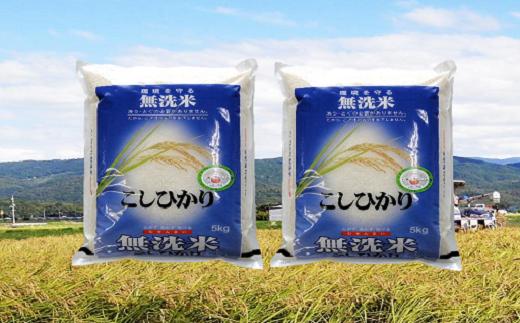 093 鳥取のうまい米(無洗米10kg)