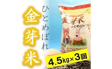 ☆全3回お届け頒布☆ 平成30年産金芽米ひとめぼれ4.5kg