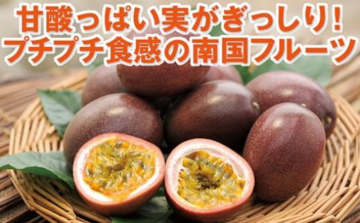 【A-358】甘酸っぱい香りとプチプチ食感が魅力の国産パッションフルーツ