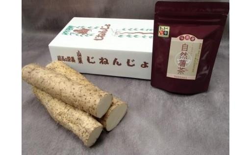 080 自然薯・自然薯茶セット(鳥取県特別栽培農作物)
