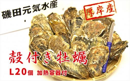 [№5863-0058]厚岸産殻付き牡蠣Lサイズ20個入(加熱容器付)
