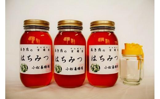 D32210 秋田の玄圃梨蜂蜜1kg×3本+ピッチャー付