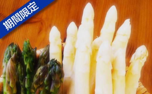 [B-20] 瀬川農場「北海道アスパラ食べくらべ」1.5kg