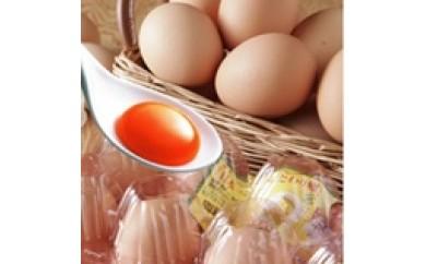 養鶏所より直送!魅惑の濃厚卵!こだわり家族のこだわり卵60個入