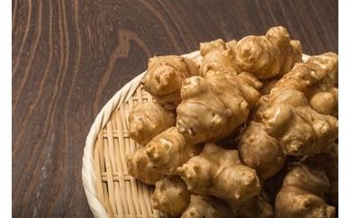 BD01 【数量限定】JAS規格のキクイモで作ったお茶&チップス<おのっぷ農園>【15000pt】