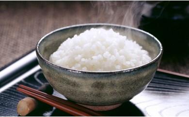 コシヒカリ(白米10kg入り1袋)