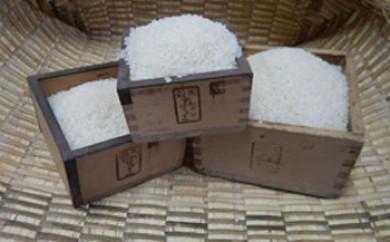 厳選いずみ米(白米10kg)