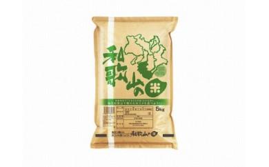 和歌山県産 和歌山米 10kg(5kg×2袋)
