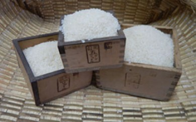 厳選いずみ米(白米5kg)