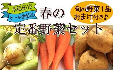 春限定の新野菜セット (新じゃがいも、新玉ねぎ、春人参)に旬の地元野菜を1品加えてお届け! 約5kg 【クール便配送】