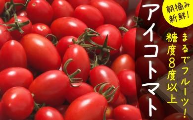 AK08-C 【完熟ミニトマト】アイコトマト 1kg