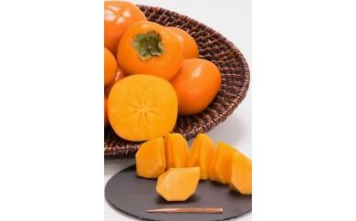 【10月発送】紀州のひらたね柿
