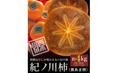 和歌山県産 紀ノ川柿 約4kg