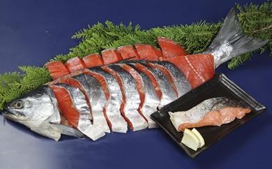 <限定>味・色・鮮度ともに抜群。旨い!紅鮭切身