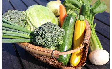 季節の近江野菜の詰め合わせ