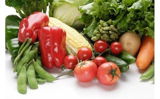 1-17 旬のお野菜詰め合わせ