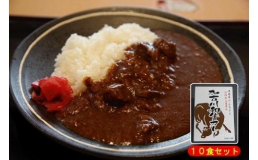 加古川和牛カレー(10食)