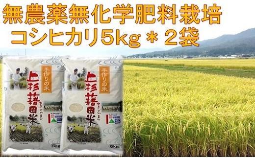 004-001【先行予約/H30新米】無農薬無化学肥料栽培コシヒカリ10kg≪玄米可≫