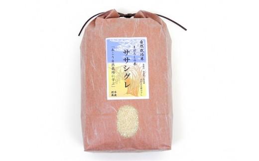 H0016 木こりの菊池農園 自然栽培米29年度産【ササシグレ】(白米・玄米) 10㎏
