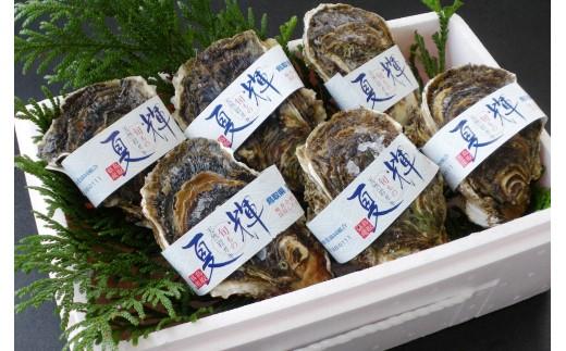 072 鳥取賀露港 天然岩がき「夏輝」セット