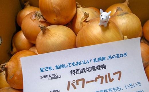 「玉葱ひとすじ。中島農園」札幌黄系玉葱5kg