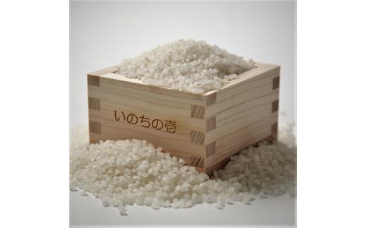 A04 飛騨産 いのちの壱(白米)3kg