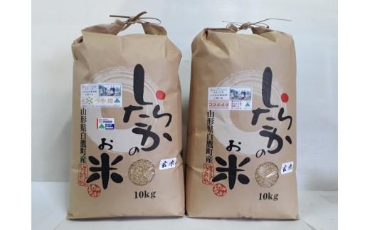 F2 しらたかのお米(姫殿)玄米2種セット