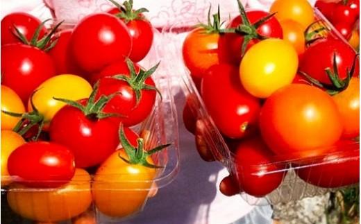 D12 トマトファーム飛騨 自然栽培トマト&ジュースふるさとコース