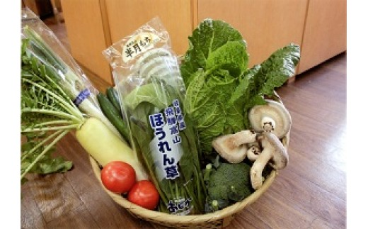 A17 季節の特選「飛騨の野菜セット」