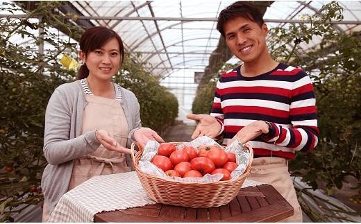 期間限定!プレミアムフルーツトマト