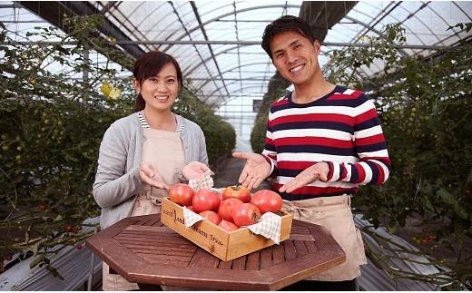待ってでも食べたい 期間限定 初恋スイーツトマト