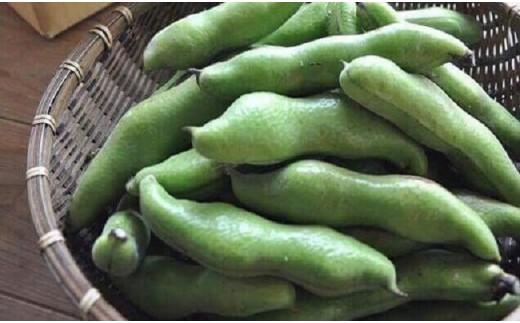 【A52】初夏の味覚!房州産 空豆(そらまめ) サヤ付き3.8kg箱
