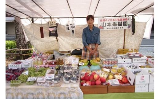 C17 山本果樹園の季節の果物セットAコース
